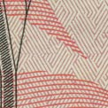 fondo color durazno en el billete de $50